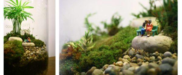monde miniature terrariums Un brin de folie
