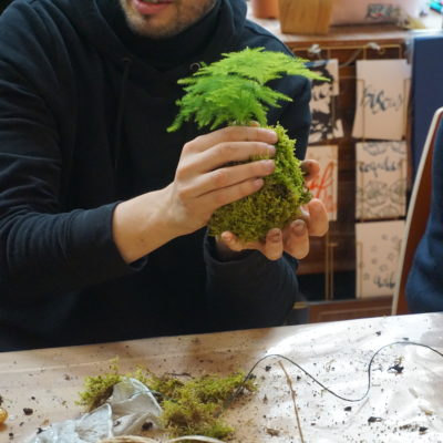 Kokedama Asparagus Un brin de folie atelier