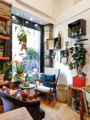 Espace café fleurs lyon1