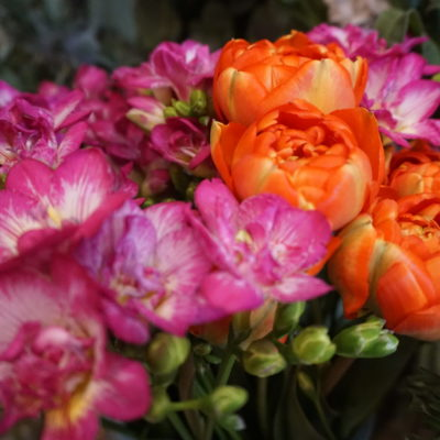 fleurs Un brin de folie